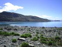 Looking out on to the clam waters of Lake Tekapo.