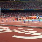 """""""Beijing Olympics: Bird"""