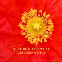True Beauty Is What Lies Deep Within poster