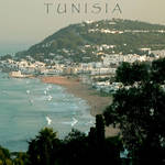 """Tunisia poster"" by rayjacque"