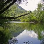 """Stillness by the River"" by HappyEye"