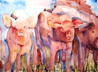 Pig Squeal, Watercolor Painting Farm Animal Art