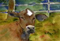 Brown Cow, Watercolor Painting Bovine Country Farm