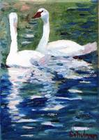 Swan Lake Lovers, Oil Painting White Bird Wildlife