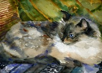 Siamese Basking, Watercolor Painting Animal Cat Ar