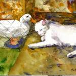 """An Unexpected Friendship, White Cat Duck Watercolo"" by schulmanart"