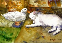 An Unexpected Friendship, White Cat Duck Watercolo