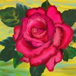 """""""Abstract Red Rose On Yellow"""" by scrapydapy"""