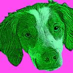 """Pop Art of Dog"
