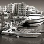 """""""Navy Pier Boat Dock"""" by JoanneCoyle"""