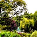 """Hathaway Garden Labyrinth"" by lochithea"