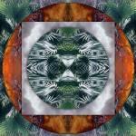 """Bush mandala - palmtree"" by belinda"