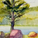"""Pink Rock Edgecomb pond Watercolor"" by ArtbyGenell"