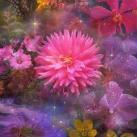 Flowers Art Prints & Posters by Barbara Landrith