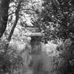 """Bridge"" by kelleyphotography"