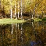 """Matanuska Lake, Palmer, Alaska"" by Annalucia"