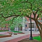 """Campus Beauty with logo"" by DigiPix"