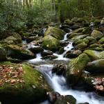 """Mountain Stream"" by jones3006"