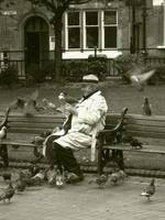 Birdman of Town Hall Square