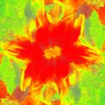 """IK TF 101_0577 tulip flpmrr multiply lyrbluelumin"" by SMicheleSmith"