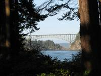Whidbey Island, WA view of Deception Pass Bridge