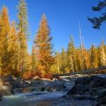 """Cle Elum River In Fall    Cascade Mountains"" by budo"