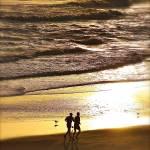 """Morning Run"" by DigiPix"