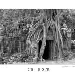 """Ta Som"" by sjpettersson"