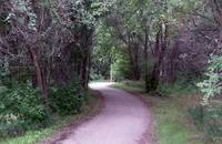 bike trail - summer