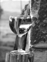 Wine glass 2 copy