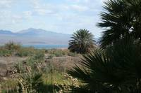 View From Roger's Spring - Lake Mead 2