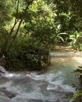 Peace of Dunn's River