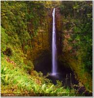 442 ft tall water falls