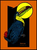 Toucan and Full Moon