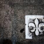 """""""Fleur de Sidewalk"""" by bluetimejt"""