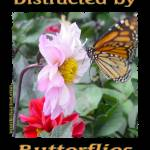 """Distracted by Butterflies 04155"" by quotes"