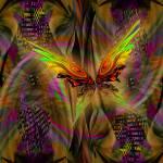 """flutter"" by ginhollow"