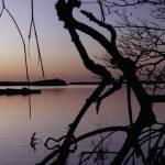 """""""MangrovesAtSunset II"""" by BobWood"""