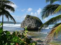 Barbados' big rock...