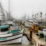 """Foggy Harbor"" by BarbaraBrownPhotography"