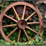 """Country western wagon wheels"" by sherryswest"