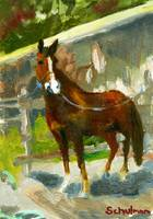 Scarsdale Rider, Oil Painting Horse Equine Art