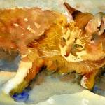 """Tabby Lights, Watercolor Painting Animal Orange Ca"" by schulmanart"