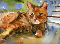 Cat King, Watercolor Painting Animal Orange Ginger