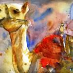 """""""Camel Art"""" by schulmanart"""