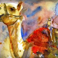 """Camel Art"" by schulmanart"