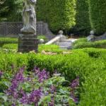 """garden"" by ehcalum"