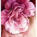 """""""Whisper of Flower"""" by ivory"""