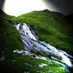 """""""Waterfall"""" by Sari-Art"""