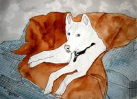 HUSKY dog PAINTING